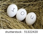 A conceptual image of an IOU in the nest egg. - stock photo