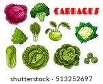 vegetable cabbages set. red... | Shutterstock .eps vector #513252697