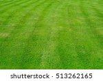 a beautiful green freshly... | Shutterstock . vector #513262165