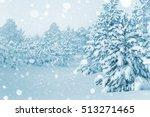 Bright Winter Landscape With...