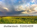 rape field under heavy clouds... | Shutterstock . vector #513314359