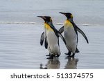 Three King Penguins ...