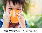 adorable asian baby boy hand... | Shutterstock . vector #513393001