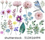set watercolor elements of rose ... | Shutterstock . vector #513416494