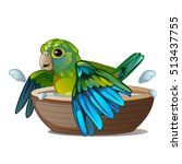 Green Parrot Bathing In A Bowl...