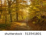 road in the autumn forest | Shutterstock . vector #513541801