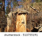 Creative Wood Face Carving On...