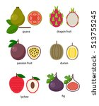 set of exotic fruit  guava ... | Shutterstock . vector #513755245