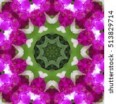 kaleidoscope with natural... | Shutterstock . vector #513829714