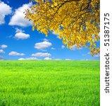 autumn tree on the field | Shutterstock . vector #51387175