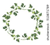 parsley frame circle isolated... | Shutterstock . vector #513871789