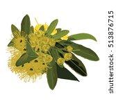 golden penda flowers | Shutterstock .eps vector #513876715