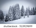 christmas background of snowy... | Shutterstock . vector #513929899