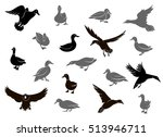 set of flying wild ducks. duck... | Shutterstock .eps vector #513946711