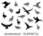 set of flying wild ducks. duck... | Shutterstock .eps vector #513946711