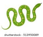 green snake vector illustration.... | Shutterstock .eps vector #513950089