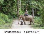 chiang mai  thailand   november ... | Shutterstock . vector #513964174