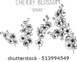 Drawing Flowers. Cherry Blosso...