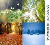 Four Seasons Of Year    Winter...