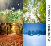 Four Seasons Of Year    Winter...