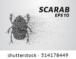 the scarab of the particles....