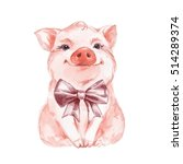 Funny Pig And Bow. Isolated On...