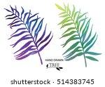 palm leaves . set of vector... | Shutterstock .eps vector #514383745