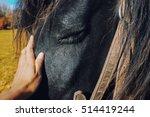 a black horse portrait feeling... | Shutterstock . vector #514419244