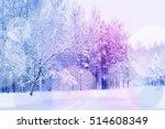 beautiful view on winter park... | Shutterstock . vector #514608349