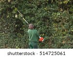 professional hedges cutting... | Shutterstock . vector #514725061