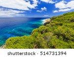 niue island. hikutavake reef in ... | Shutterstock . vector #514731394