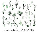 set of grass and plants  hand... | Shutterstock . vector #514751209