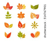 multicolor autumn leaves flat... | Shutterstock . vector #514767901