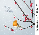 Vector Christmas Card With Bir...