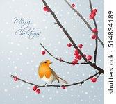 Vector Christmas Card With Bir...