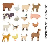 pets and farm animals flat... | Shutterstock . vector #514859209