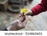 granny and granddaughter... | Shutterstock . vector #514863601
