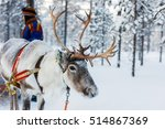 reindeer in a winter forest in... | Shutterstock . vector #514867369