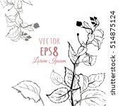 graphic branch with leaves ... | Shutterstock .eps vector #514875124