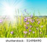 grass and perfect blue sky | Shutterstock . vector #51498490
