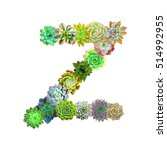 succulent letter z