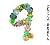 succulent letter q