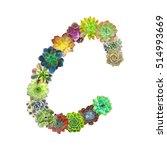 succulent letter c