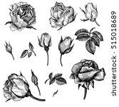 vintage vector floral set of... | Shutterstock .eps vector #515018689