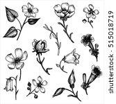 vintage vector floral set of... | Shutterstock .eps vector #515018719