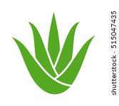 Green Aloe Vera Plant With...