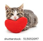 Stock photo gray kitten and red heart isolated on a white background 515052097