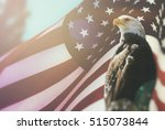 American bald eagle flag...