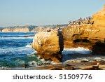 Pelicans On Rocks And Sleeping...