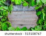 lettuce on wooden background | Shutterstock . vector #515108767
